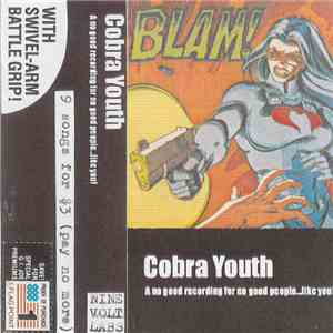 Cobra Youth - A No Good Recording For No Good People…Like You album FLAC