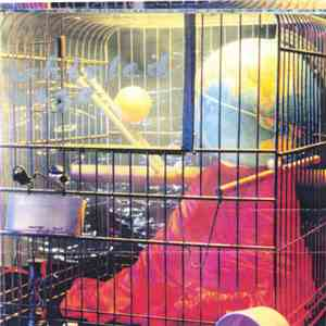 Whirled Cage - Whirled Cage album FLAC